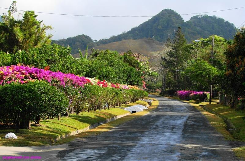 El Valle De Anton Panama  city pictures gallery : Photos of El Valle de Anton, Panama | Jorge Bennett Limnio, Composer.