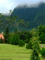Garden with Pine Trees and Hill at El Valle